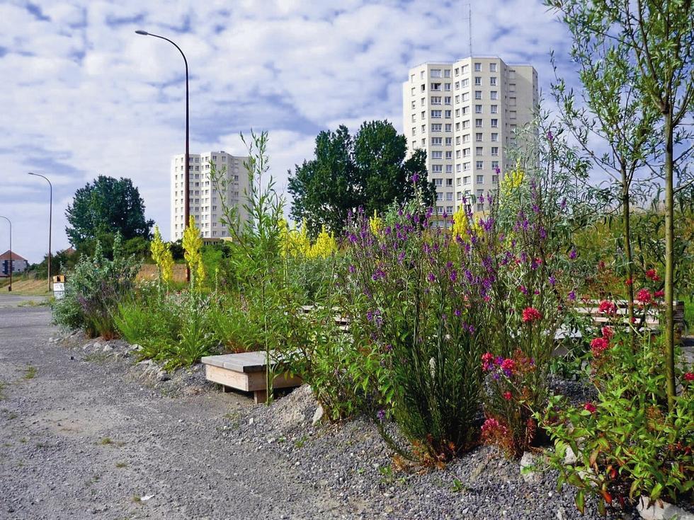Betonowy ogród